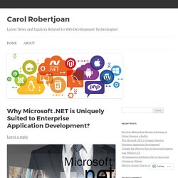 .Net to Build an Enterprise-Scale Applications