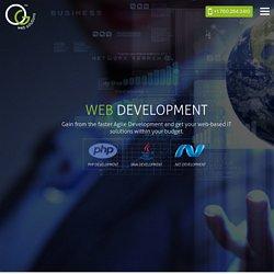 Web Application Development Services – OG Web Solutions