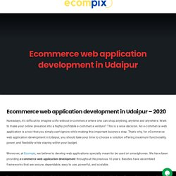Ecommerce web application development in Udaipur