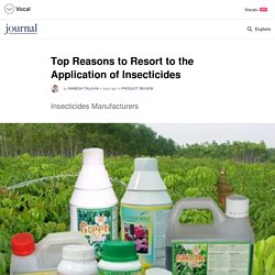 Top Reasons to Resort to the Application of Insecticides