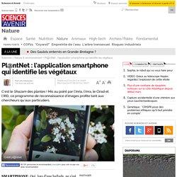 Pl@ntNet : l'application smartphone qui identifie les végétaux- 7 août 2014
