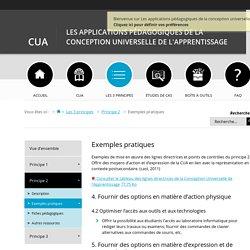 Exemples pratiques - Les applications pédagogiques de la conception universelle de l'apprentissage