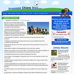 Tout sur le dressage de votre chien » Blog Archive » Apprendre chien assis