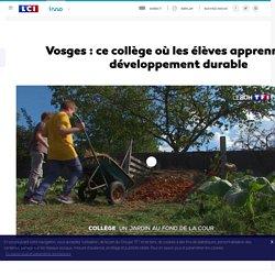 Vosges : ce collège où les élèves apprennent le développement durable