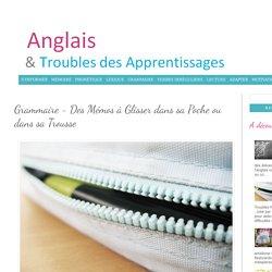 Anglais & Troubles des Apprentissages: Grammaire - Des Mémos à Glisser dans sa Poche ou dans sa Trousse