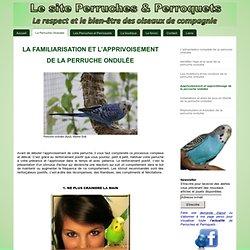 Apprivoisement et apprentissage - Perruches et perroquets