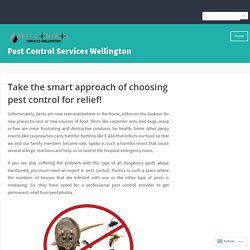 Take the smart approach of choosing pest control for relief! – Pest Control Services Wellington