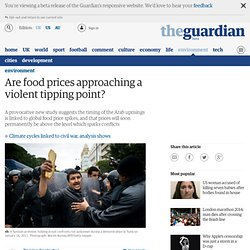 Are food prices approaching a violent tipping point? | Damian Carrington | Environment