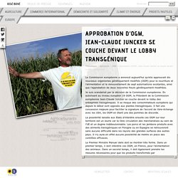 José Bové - Approbation d'OGM, Jean-Claude Juncker se couche devant le lobby transgénique