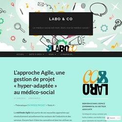 L'approche Agile, une gestion de projet «hyper-adaptée au médico-social