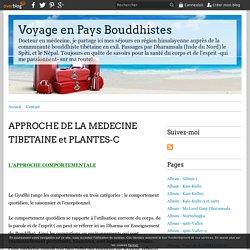 APPROCHE DE LA MEDECINE TIBETAINE et PLANTES-C - Voyage en Pays Bouddhistes