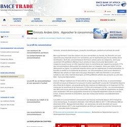 Approcher le consommateur aux Emirats Arabes Unis
