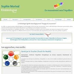 Les approches et outils proposés en séance de kinésiologie