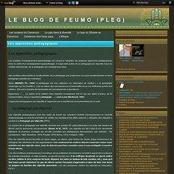 Les approches pédagogiques - Le blog de FEUMO