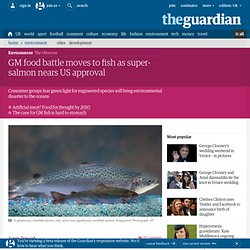 GM food battle moves to fish as super-salmon nears US approval | Environment | The Observer