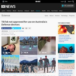 TikTok not approved for use on Australia's Defence devices - Science News - ABC News