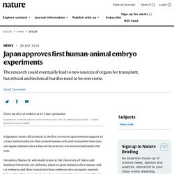 NATURE 26/07/19 Japan approves first human-animal embryo experiments
