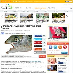 Canada Approves Genetically-Modified Salmon
