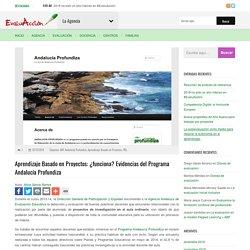 Aprendizaje Basado en Proyectos: ¿funciona? Evidencias del Programa Andalucía Profundiza