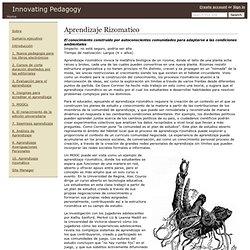 Aprendizaje Rizomatico - Innovating Pedagogy