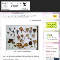 ¿Cómo aprovechar el tema de los hongos en el aula?