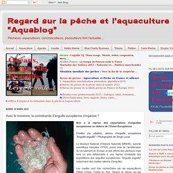 """Regard sur la pêche et l'aquaculture """"Aquablog"""": Avec le moratoire, la contrebande d'anguille européenne s'organise ?"""