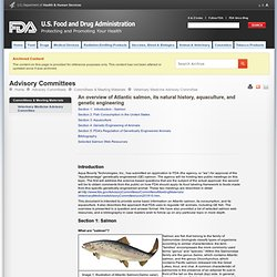 FDA 27/08/10 An overview of Atlantic salmon, its natural history, aquaculture, and genetic engineering