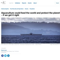 Aquaculture could feed the world and protect the planet - if we get it right