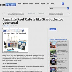 AquaLife Reef Cafe is like Starbucks for your coral