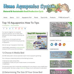 Top 10 Aquaponics How To Tips - Effectively Run Your System