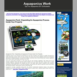 Aquaponics Pond : Expanding An Aquaponics Process Inside Your Property