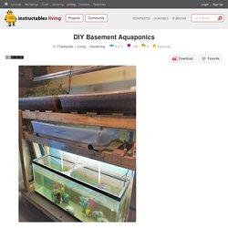 DIY Basement Aquaponics : 14 Steps (with Pictures) - Instructables