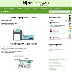 Kijani Grows : Urban Garden Systems