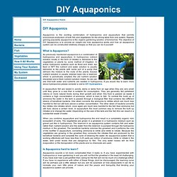 DIY Aquaponics - Aquaponics made easy so you can Do It Yourself.