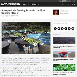 Aquaponics Is Growing Farms in the Most Unlikely Places