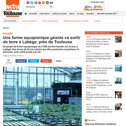 Une ferme aquaponique géante va sortir de terre à Labège, près de Toulouse