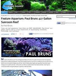Feature Aquarium: Paul Bruns 427 Gallon Sunroom Reef