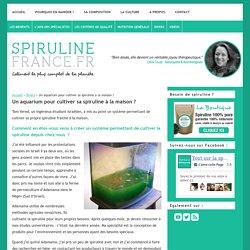 Un aquarium pour cultiver sa spiruline à la maison ?