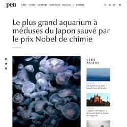 Le plus grand aquarium à méduses du Japon sauvé par le prix Nobel de chimie / Pen Magazine International