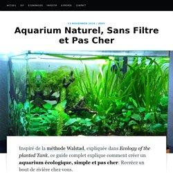 Aquarium Naturel, Sans Filtre et Pas Cher · Mr Tortue