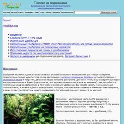 Aquarium Plant Feeding