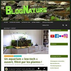 """Un aquarium """"low-tech"""" ouvert, filtré par les plantes ! - BlogNature.fr"""