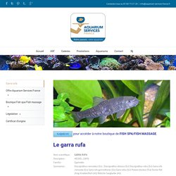 Aquarium Services France – Garra rufa
