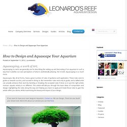 How to Design and Aquascape Your Aquarium - Leonardo's Reef