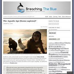 The Aquatic Ape (homo sapiens)?