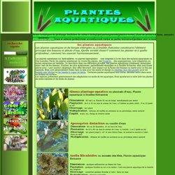 plantes aquatiques: feuilles flottantes: immergées: première page