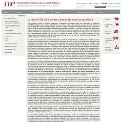 OIE 15/03/02 Editorial du Directeur général - Mars 2002 - Le rôle de l'OIE vis-à-vis des maladies des animaux aquatiques