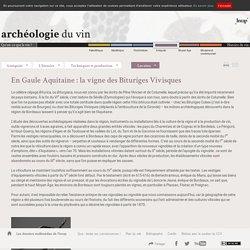 En Gaule Aquitaine : la vigne des Bituriges Vivisques