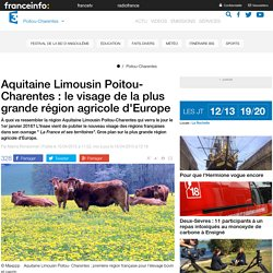 Aquitaine Limousin Poitou-Charentes : le visage de la plus grande région agricole d'Europe - France 3 Poitou-Charentes