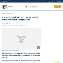 L'araignée la plus dangereuse du monde retrouvée dans un magasin bio